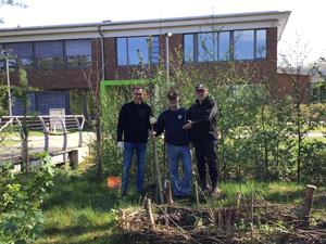 Rotary-Club spendet Obstbäume